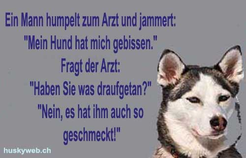 Hunde Witze